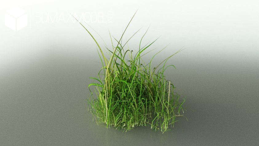 Simple Grass 3d Model Download For Free 3ds Max Models